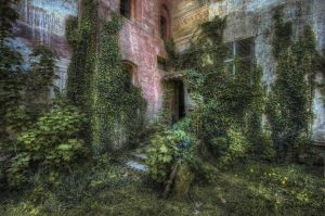 ...Hidden Garden...