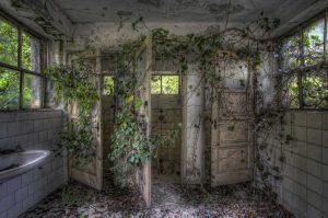 ...Photosynthesis Intruders...